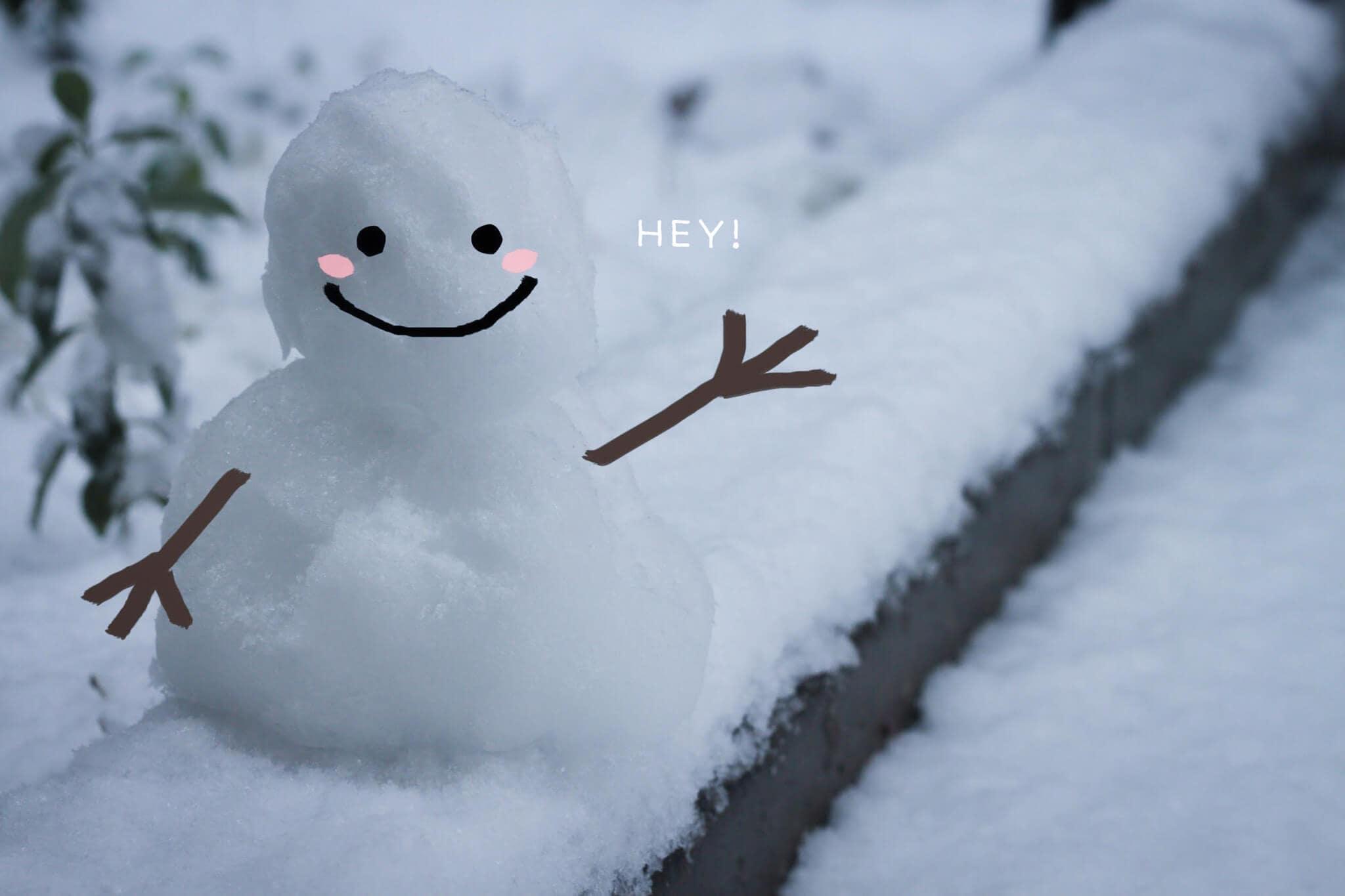 雪だるま 積立nisa